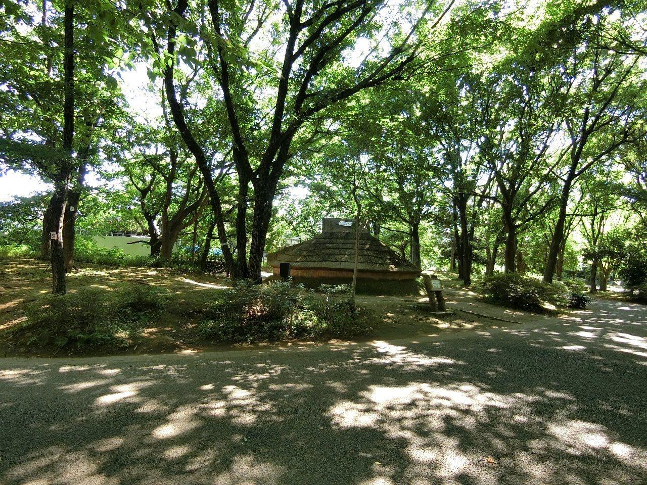 中野区新井平和の森公園